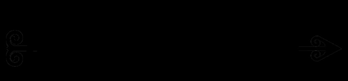 Shakyra Dunn
